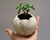 Special listing for PATTY:  Little sphere planter - dia 4.2""
