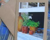 Six (6) Photo Note Cards, Open Window, Free US Shipping, Blank Inside with Sticker Embellishment