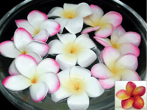 Floating Plumeria - It comes in 3 colors