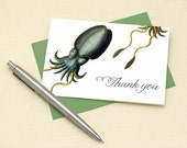 Cuttlefish Thank You Cards, Science Gifts, Cuttlefish Card, Squid Thank You Note, Marine Biology Gift, Set of 8 Thank You Notes