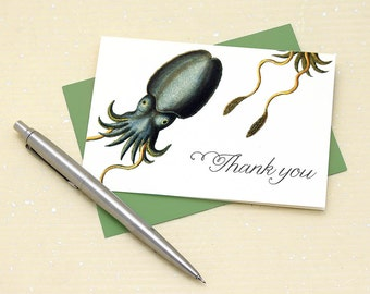 Cuttlefish Thank You Cards, Science Gifts, Cuttlefish Card, Squid Thank You Note, Offbeat Thank You, Set of 8 Thank You Notes