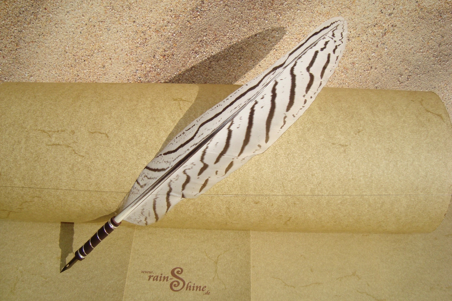Silver Pheasant Feather Quill Pen For Calligraphy L127
