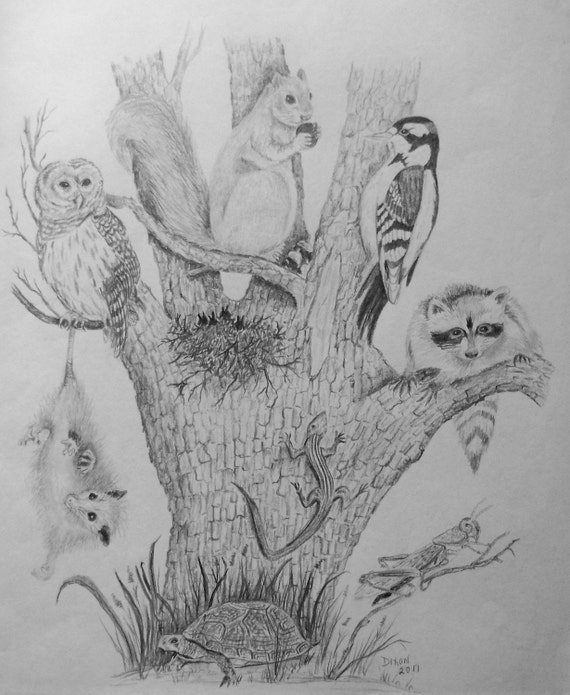 """Nature Pencil Drawing """"Tree of Life"""" with a Variety of Animals - original - One of a Kind"""