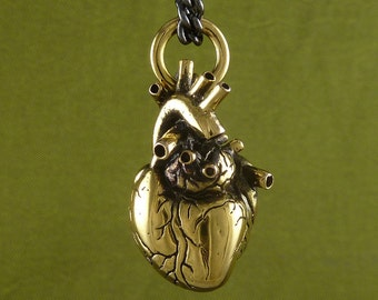 "Anatomical Heart Necklace 24 Karat Gold Plated Bronze Anatomical Heart Pendant on 24"" Gunmetal Chain"