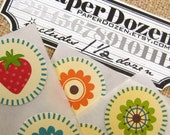 1 Dollar Sale- Small Stickers (October Afternoon)- 1 1/2 Dozen