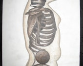 Translucent Skin Skeletal Structure Adolescent Female Figure in Browns - Original Painting