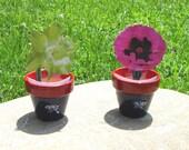 """2.5"""" Planters - STAR Garden"""