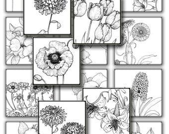 Vintage botanical Flowers  for resin pendant  1 in squares black white  instant Digital Collage Sheet, Download , Print  Clip Art Images 131