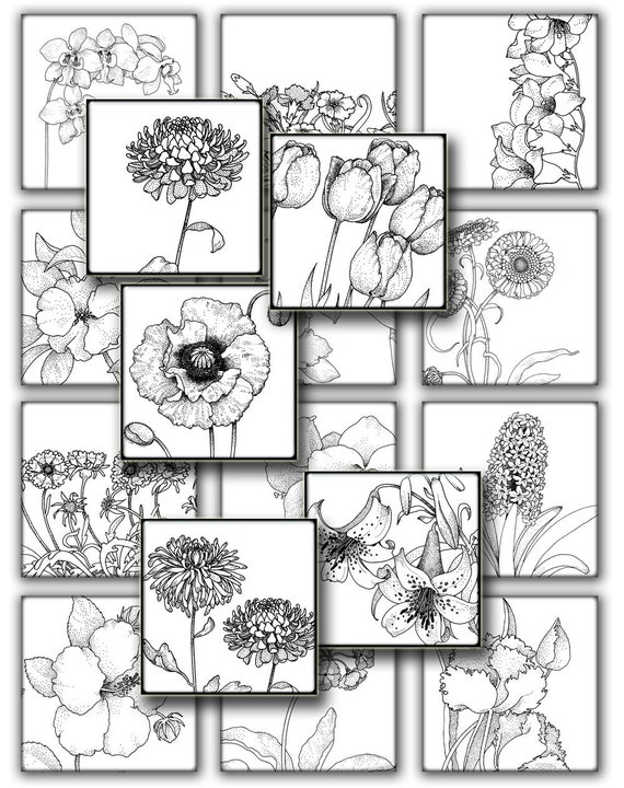 Vintage botanical Flowers  for resin pendant  1 in squares black white  instant Digital Collage Sheet, Download , Print  Clip Art Images 131