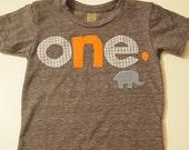 First birthday shirt, elephant birthday decor, Elephant and balloon, elephant theme, customize colors, any birthday boy or girl