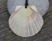Simply Shelly Natural Shell Pendant