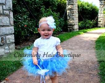 Gorgeous Cinderella Costume Petti-Tutu and Rosette Headband Newborn to Adult