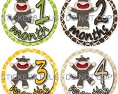 FREE NB Gift Gender Neutral Baby Month Milestone Stickers  Sock Monkey PRECUT Bodysuit Monthly Milestone Stickers Photo Prop