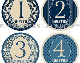 Baby Month Stickers Monthly Baby Milestone Stickers PRECUT Bodysuit Stickers Monthly Stickers Plus FREE Gift Boy Vintage Blue Damask Dots