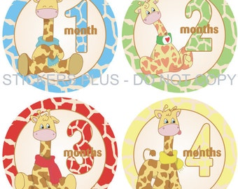 Monthly Baby Boy Milestone Stickers PRECUT Bodysuit Precut Baby Month Growth Age Stickers Plus FREE Gift Jungle Zoo Giraffe Girrafe