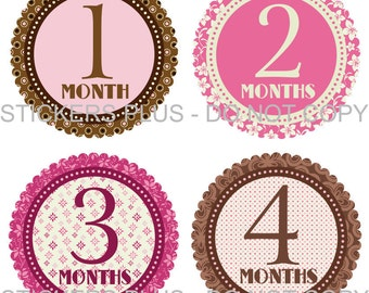 Monthly Baby Milestone Stickers Baby Month Stickers Plus FREE Gift Girl Brown Pink Rose Flower Shower Gift PRECUT Baby Age Stickers