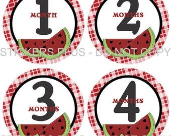 Baby Month Stickers Plus FREE Gift Milestone Baby Age Stickers Sweet Watermelon Gingham 1-12 Months Photo Prop