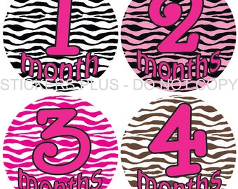 Baby Month Stickers Plus FREE Gift Monthly Baby Girl Stickers Zebra Print Milestone Markers PRECUT Bodysuit Stickers Photo Prop
