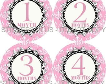 Baby Month Stickers Plus FREE Gift Girl Chandelier Pink Black Shower Gift PRECUT Bodysuit Milestone Stickers Monthly Baby Age Stickers