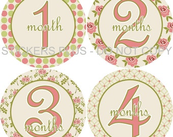 Baby Month Stickers Plus FREE Gift Girl Pink Green Cream Rose Floral Flowers Dots Shower Gift PRECUT Baby Age Stickers Baby Month Stickers