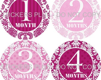 Monthly Baby Milestone Stickers  Mauve Pink Damask Shower  PRECUT Baby Stickers Monthly Baby Stickers Baby Month Sticker