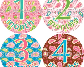 Monthly Baby Stickers Baby Girl Milestone Sticker Bodysuit PRECUT Sticker Month Baby Sticker Photo Prop Gift Sticker Pink Green Paisley