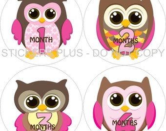 Baby Month Stickers Monthly Baby Milestone Stickers Plus FREE Gift Girl Owl Owls Pink Brown II PRECUT Baby Age Stickers Photo Prop 1-12 m