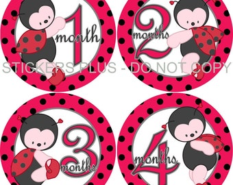 Baby Girl Monthly Stickers Plus FREE Gift Ladybug Lady Bug PRECUT Bodysuit Milestone Baby Month Stickers Monthly Baby Photo Prop