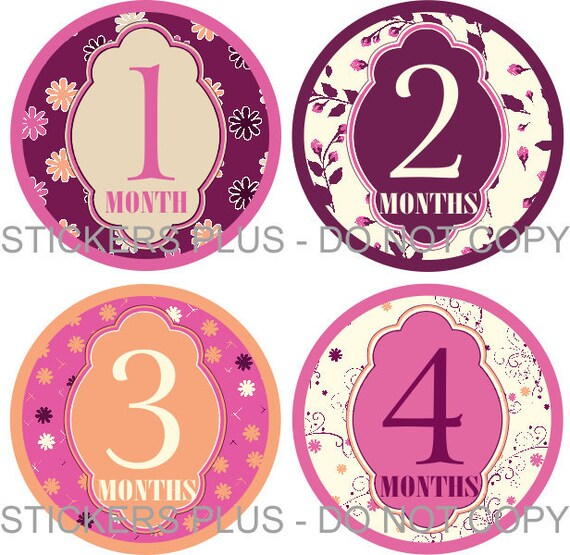Baby Month Stickers   Girl Monthly Milestone Stickers  Elegant Flowers Plum Pink Peach - Fast Ship - 1-12 M