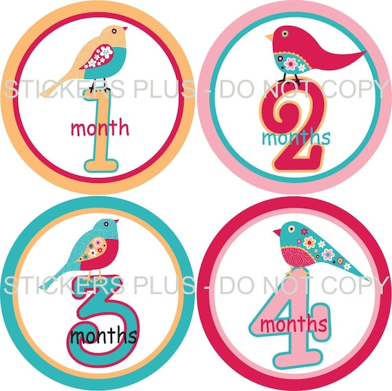 Baby Month Stickers Plus FREE Gift Girl Monthly Milestone Stickers Pretty Floral Birds Turquoise Pink Yellow Red 1-12 M Monthly Photo Prop