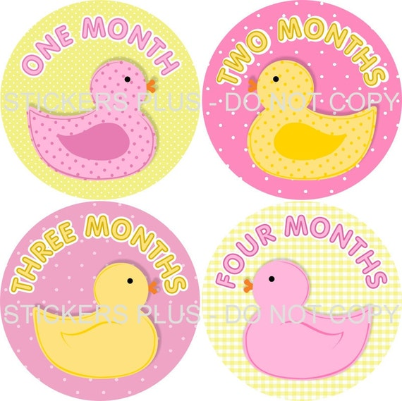 Baby Month Stickers Plus FREE Gift Monthly Baby Girl Milestone Stickers Rubber Ducks Ducky Duckies Pink Yellow Dots - 1-12 Months