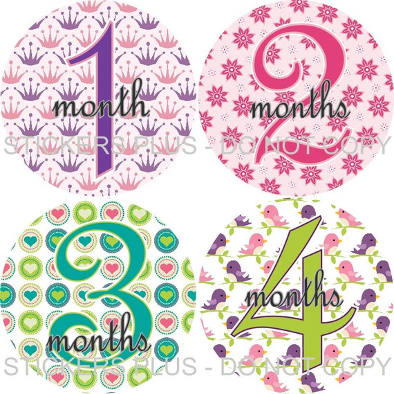 Baby Month Stickers Plus FREE Gift Girl All Different PRECUT Monthly Baby Age Stickers Baby Milestone Stickers Photo Prop