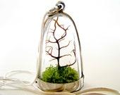 FREE Shipping and Free Gift Wrap Terrarium Necklace: Modern Tree and Moss Terrarium Necklace