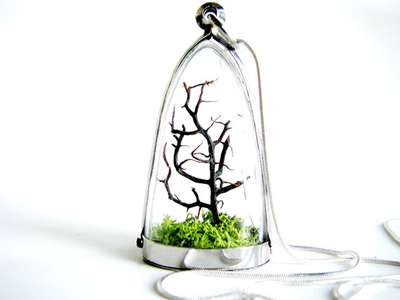 Free US Shipping: Modern Tree and Moss Terrarium Necklace