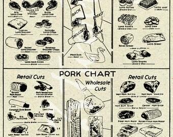 Vintage butcher chart, pork and lamb meat illustration 24x36