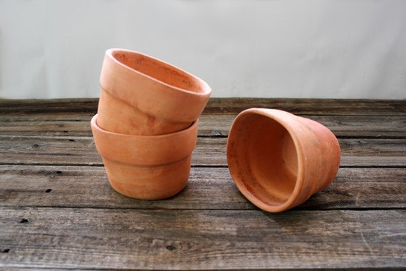 Terra Cotta small Herb Garden Pots set of 3