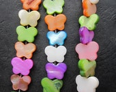 5 strands --Assorted Colorful Fresh Water Shell Small Butterfly 10x12x3mm designer pendant beads-- 52 pcs Full Strand
