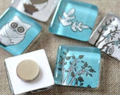4 Glass Magnet, aqua Owls, Magnet by Lafabriqueabricole on Etsy