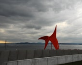 8 x 10 photo of Alexander Calder's Eagle sculpture, Olympic Sculpture Park, Seattle, Puget Sound, Washington, USA
