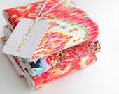 Set of 3 Burp Cloths-Vibrant Navajo/Blossom Print (Amy Butler Designer Fabric)