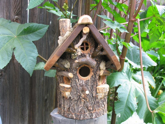 Natural Rustic Elm Bird House