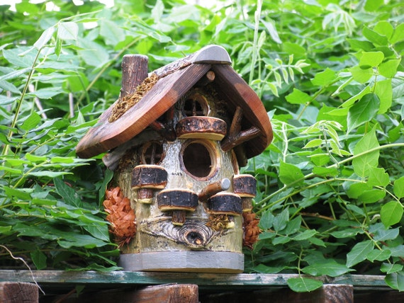 Woodland Aspen Bird House