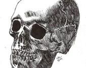 PRINT 3/4 original Skull drawing ACEO