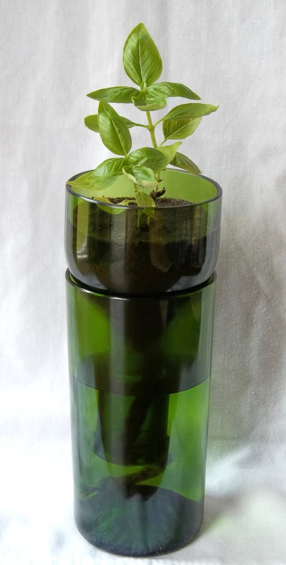 Green VinoPonic Planter - Re-Purposed Wine Bottle Self Watering Planter
