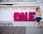 """HOT PINK """"ONE"""" photo prop letters"""