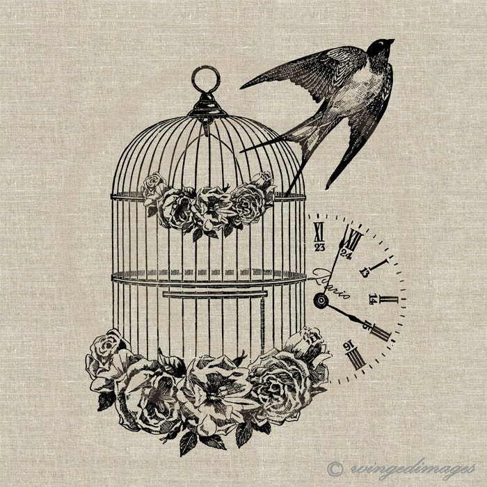 french vintage bird cage swallow instant download digital. Black Bedroom Furniture Sets. Home Design Ideas
