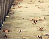 Fine Art Photograph, autumn, fall, leaves, warm tones, bridge, wall art, home decor