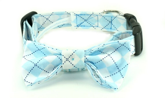 Checkered Plaid in Blue - Cotton Fabric 1 Inch Dog Collar with Bow Tie - LARGE - Ready to Ship