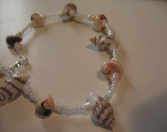 Sea Collection Alice/Hermit shells and popcorn shells anklet