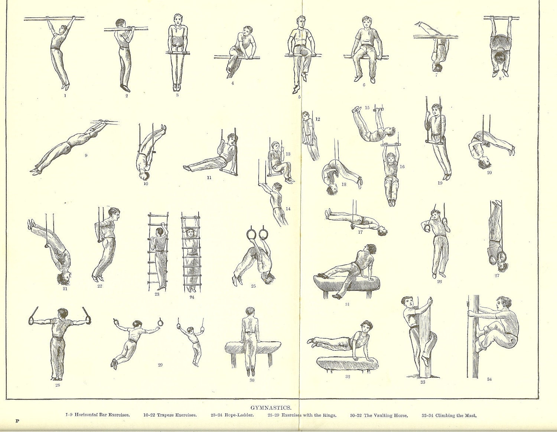 Beginner Ring Workout Routine